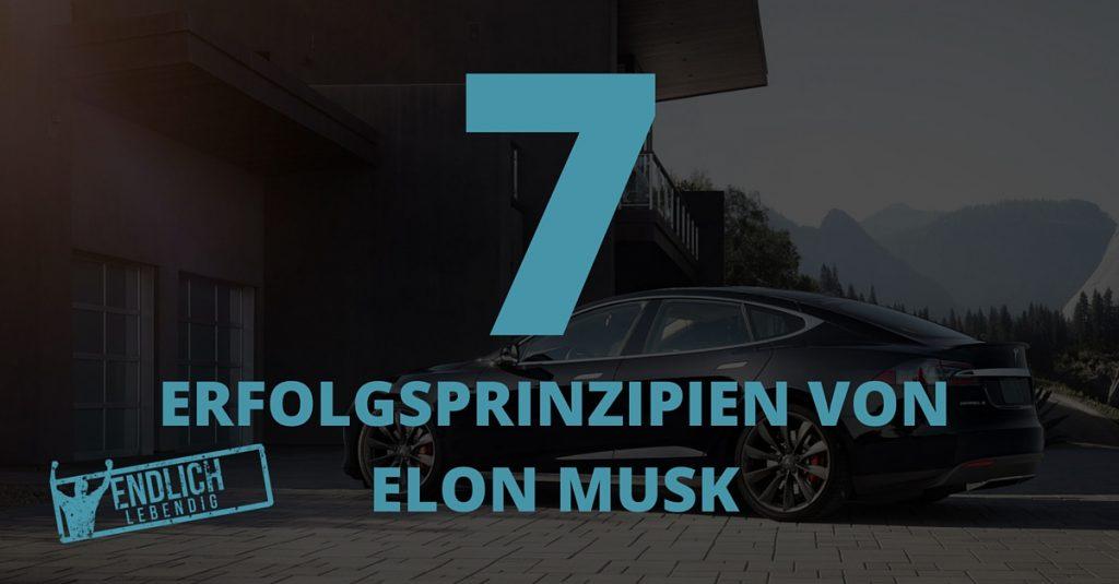Elon Musk Erfolg